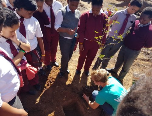 Elne van Coller: Celebrating Arbor Day with Joe Solomon